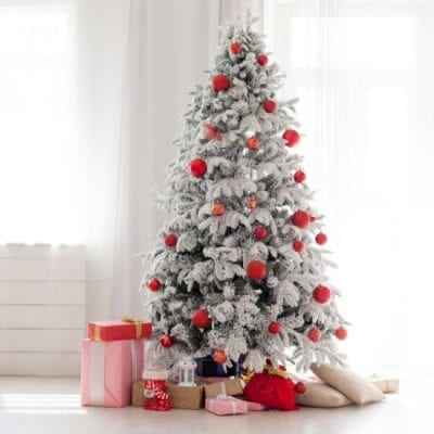 13 Fun Facts About Christmas