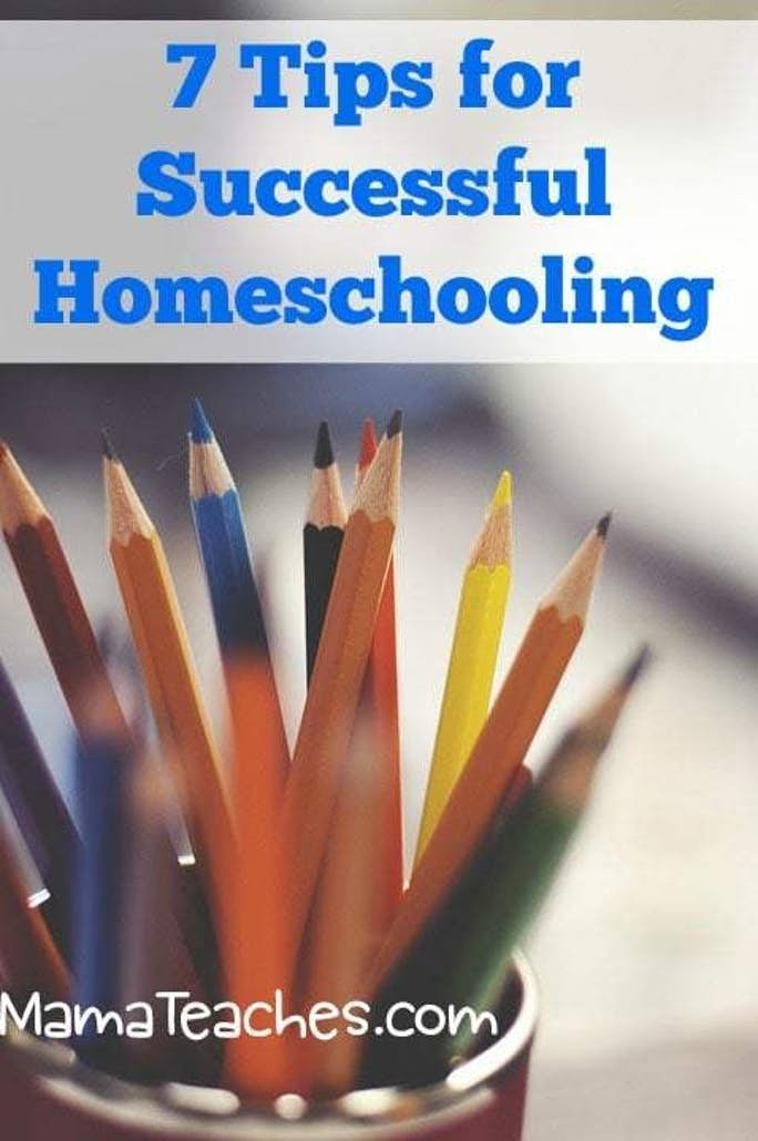 7 Tips for a Successful Homeschool Year