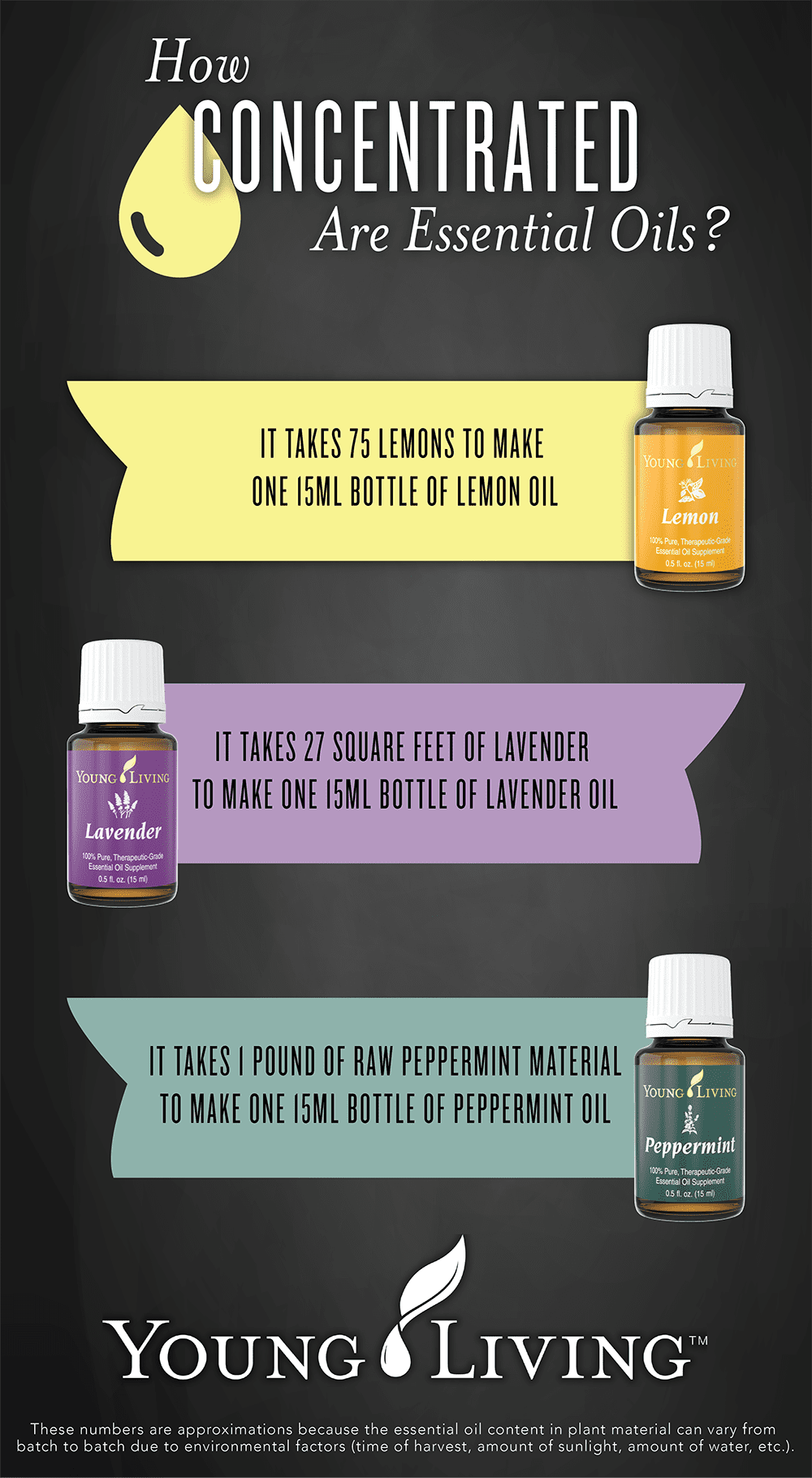 Essential Oils are Concentrated