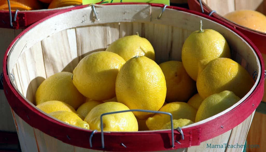 Gourmet Lemonade Recipes