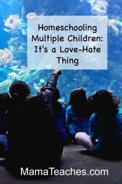 Homeschooling Multiple Children: It's a Love-Hate Thing