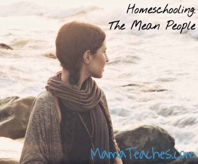 Homeschooling: The Mean People