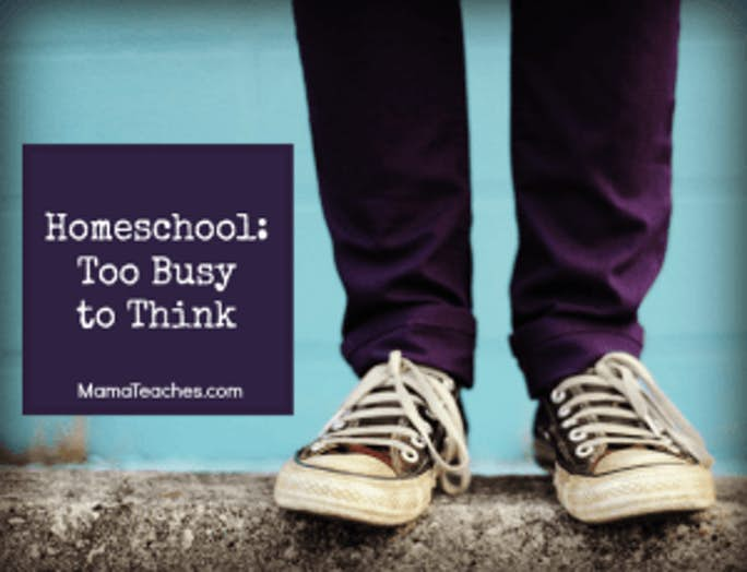 Homeschooling- Too Busy to Think
