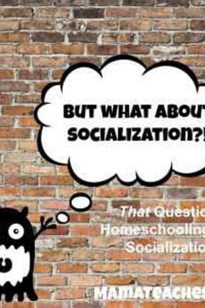 That Question- Socialization and Homeschooling