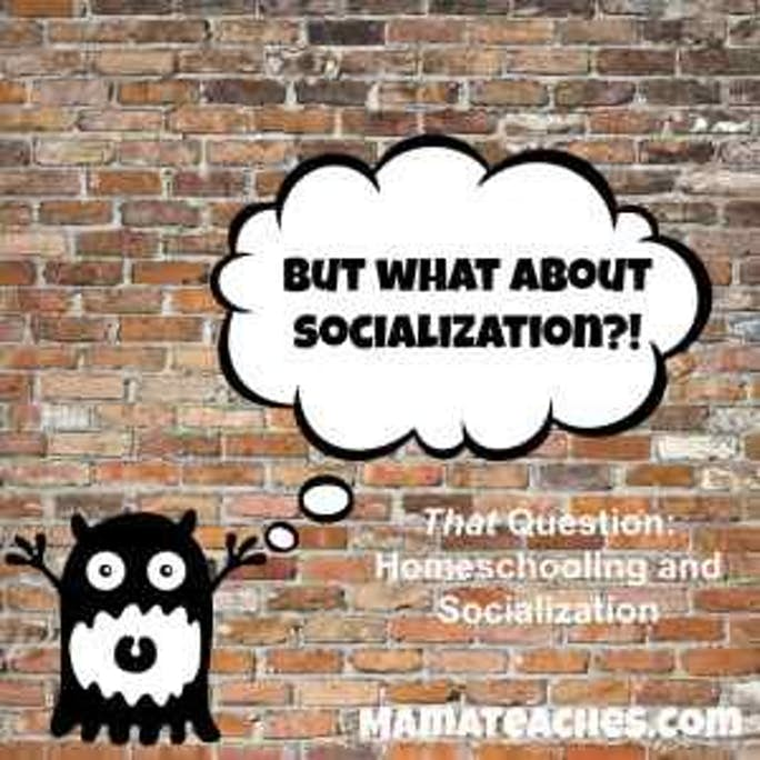 That Question - Socialization and Homeschooling