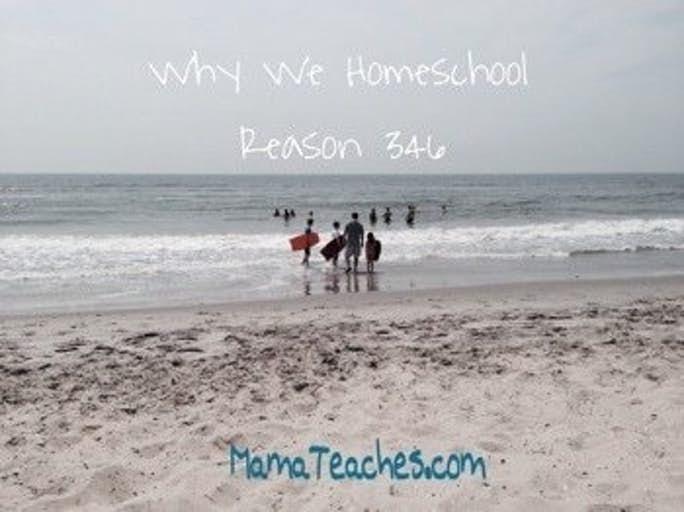 Why We Homeschool: Reason 346
