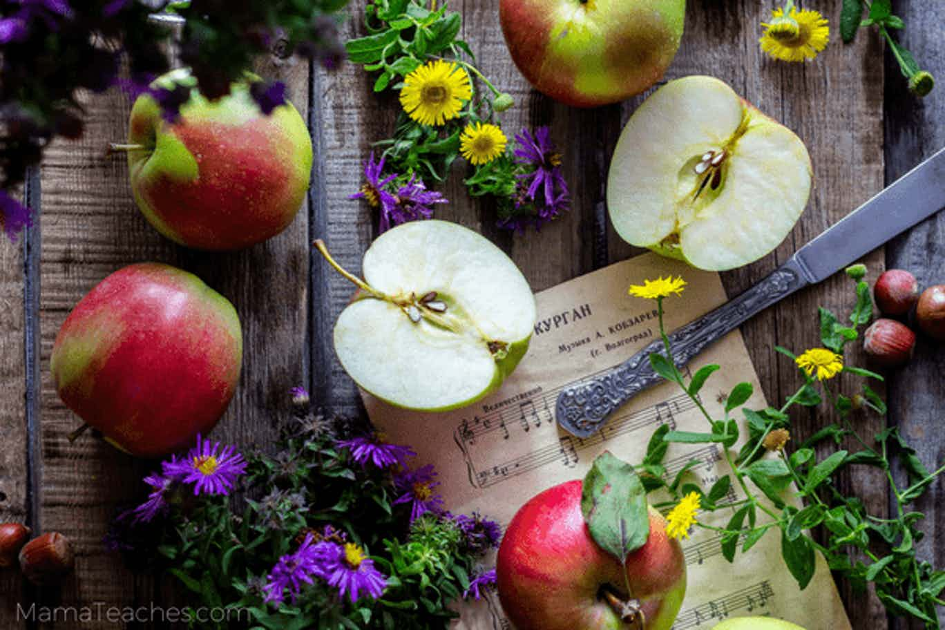 10 Apple Crafts for Kids