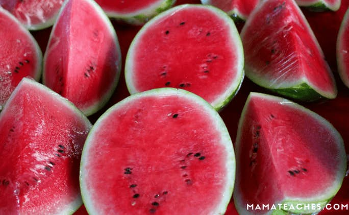 16 Watermelon Crafts for Kids