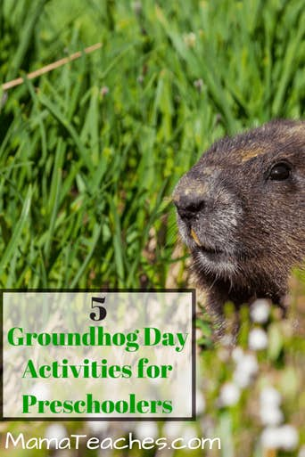 5 Groundhog Day Lessons for Preschool