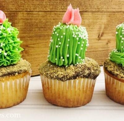 Cactus Cupcakes Recipe
