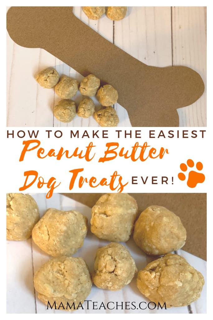 Easy Homemade Dog Treats Recipe