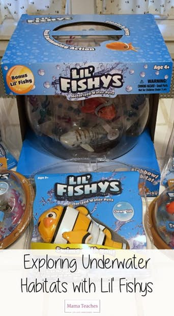 Explore Underwater Habitats with Swimming Fish Toys