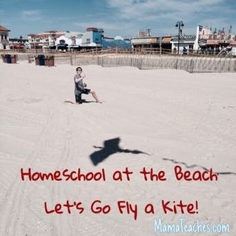 Homeschool at the Beach - Let's Go Fly a Kite and Learn About Aerodynamics and Wind