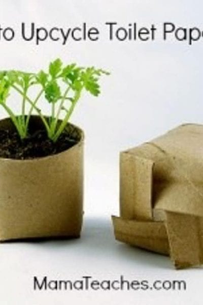 How To Upcycle Toilet Paper Rolls