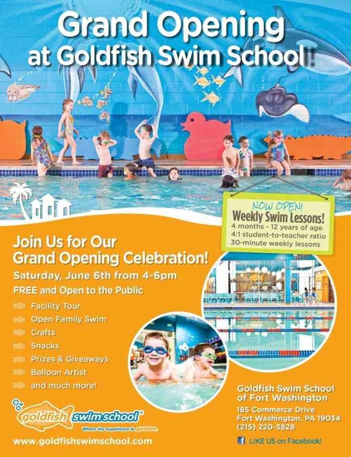 Swimming Like a Fish at Goldfish Swim School