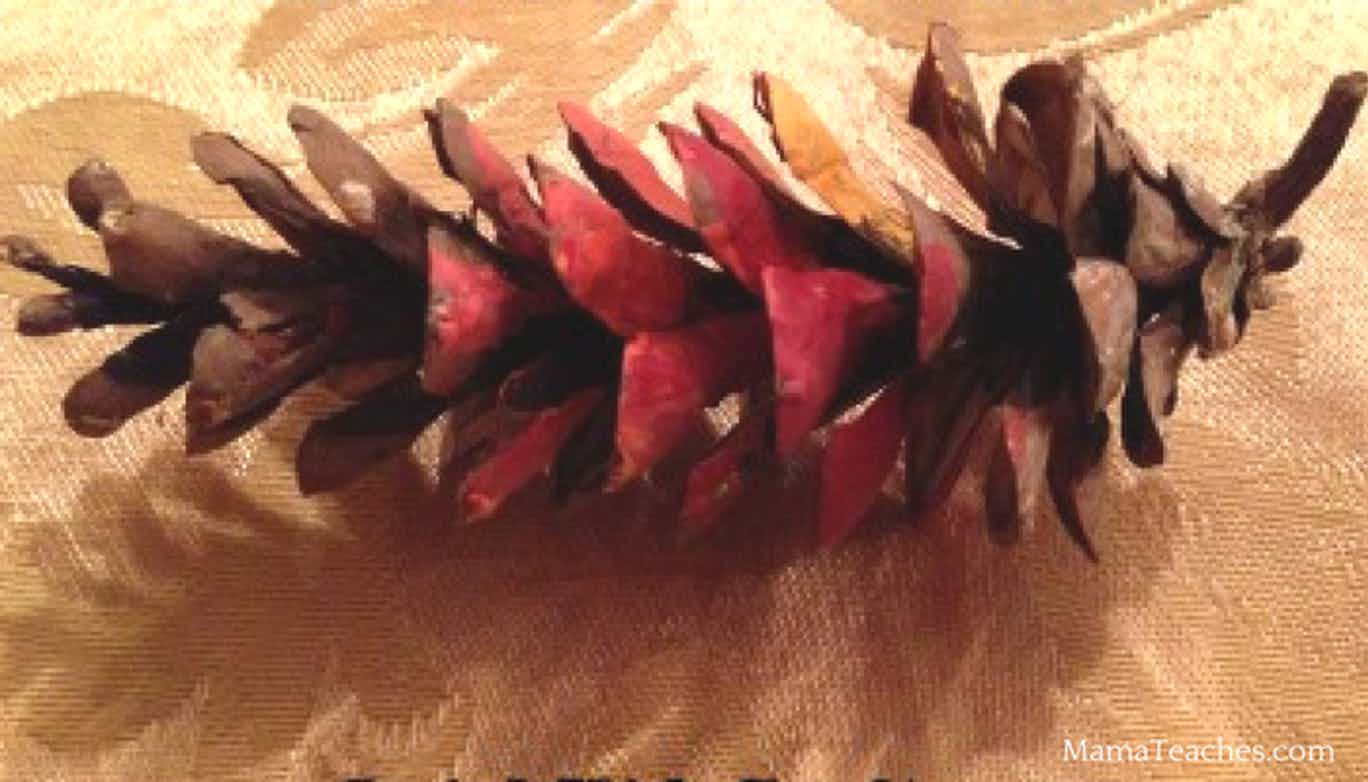Painted Pinecones Craft for Kids