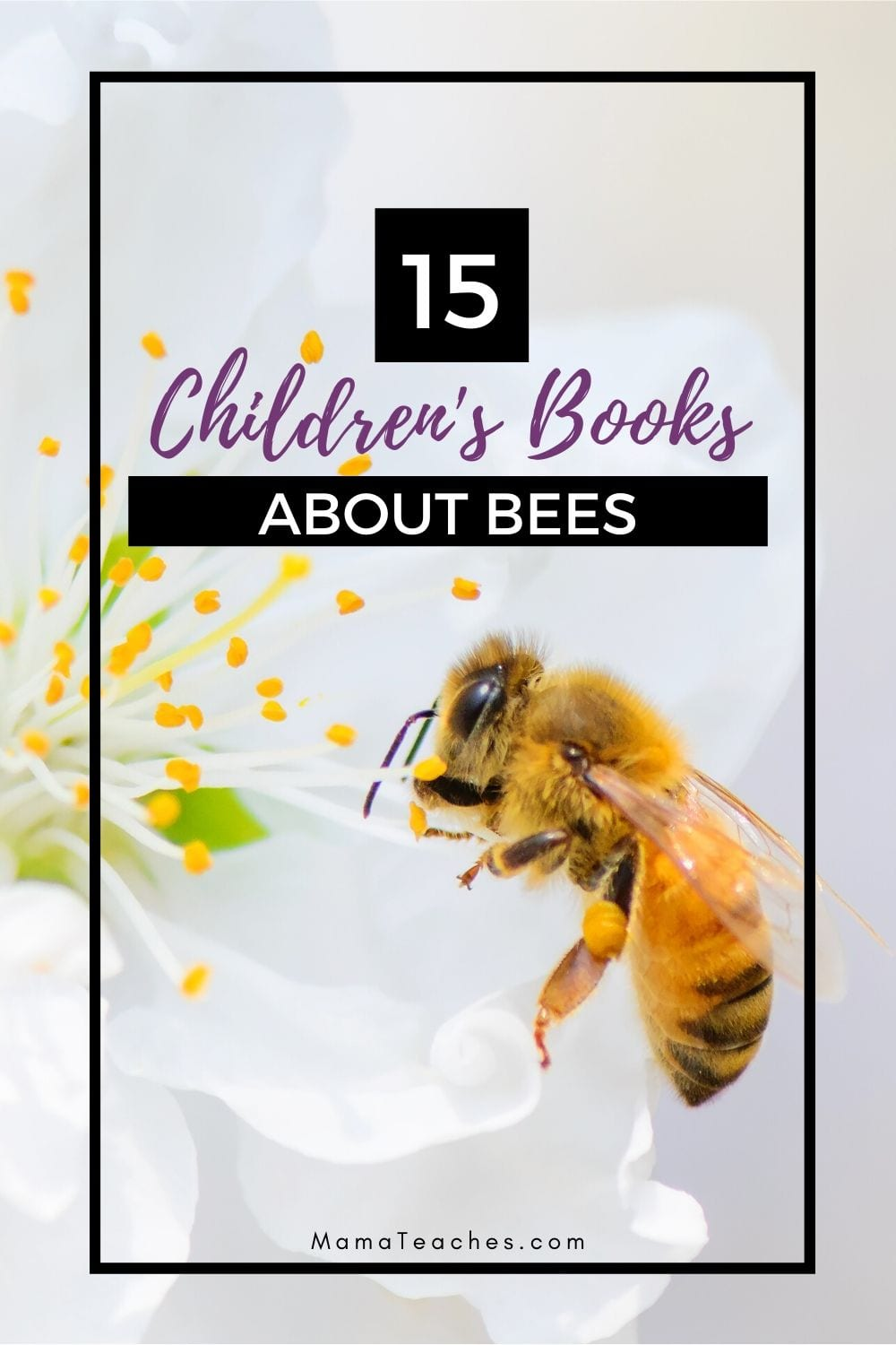 15 Fun Childrens Books About Bees to Read This Summer- MamaTeaches.com