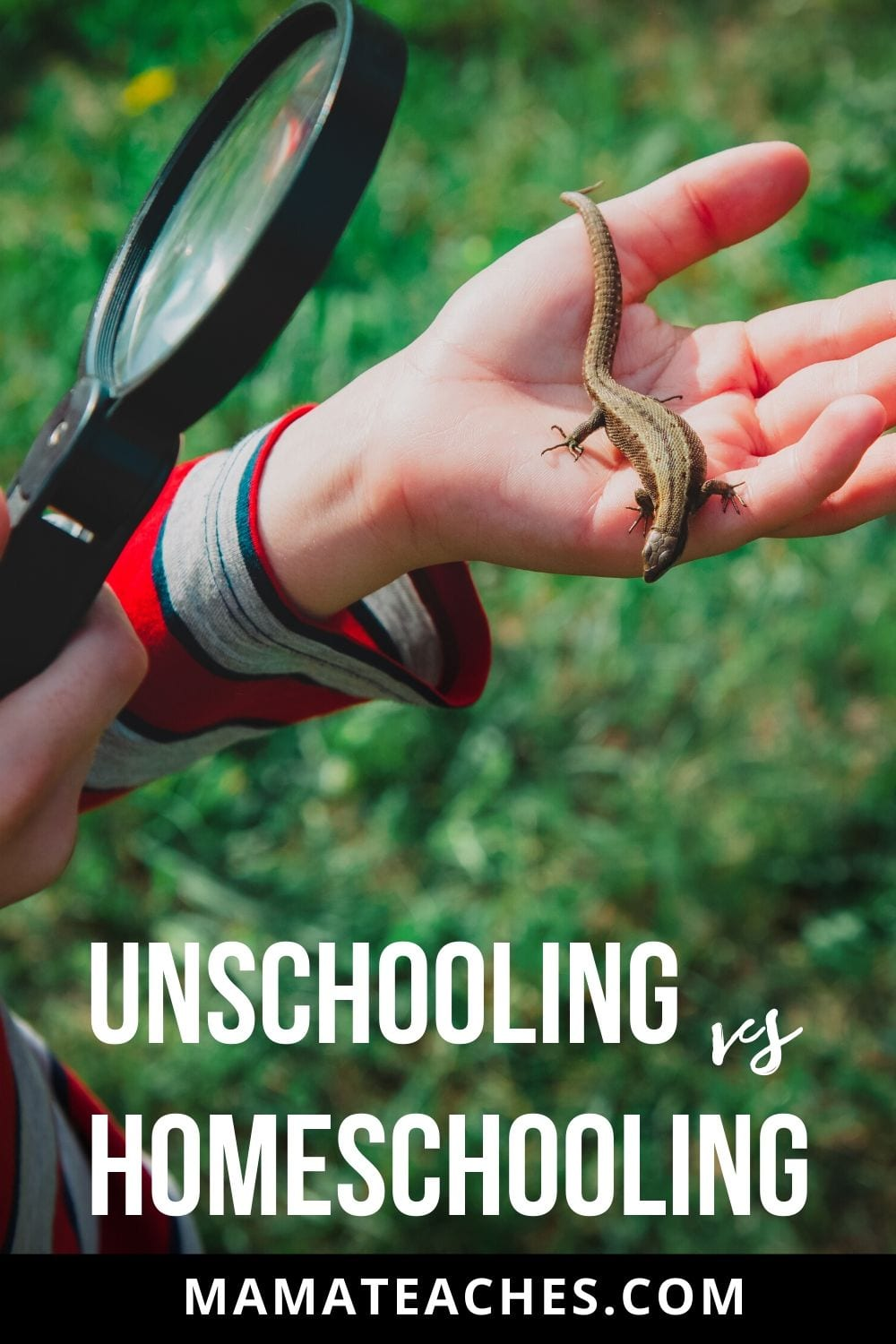 What's the Difference Between Unschooling and Homeschooling?