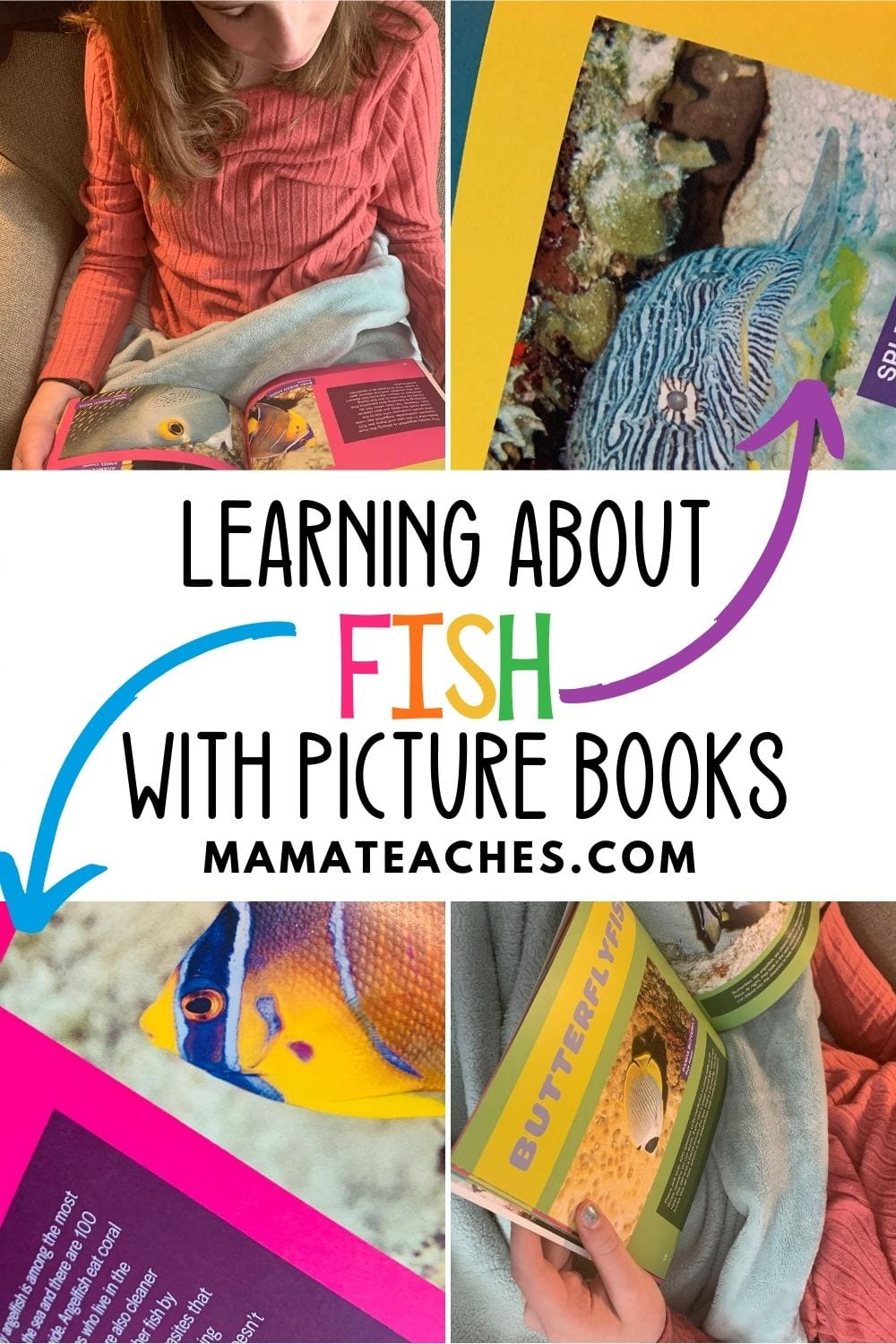 Learning About Fish with Picture Books - MamaTeaches.com