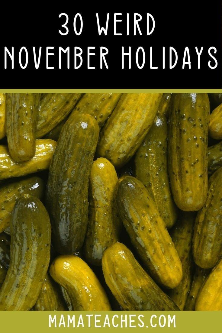 30 Weird November Holidays