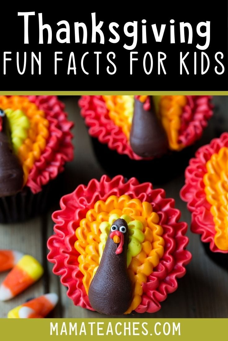 Super Fun Thanksgiving Facts for Kids