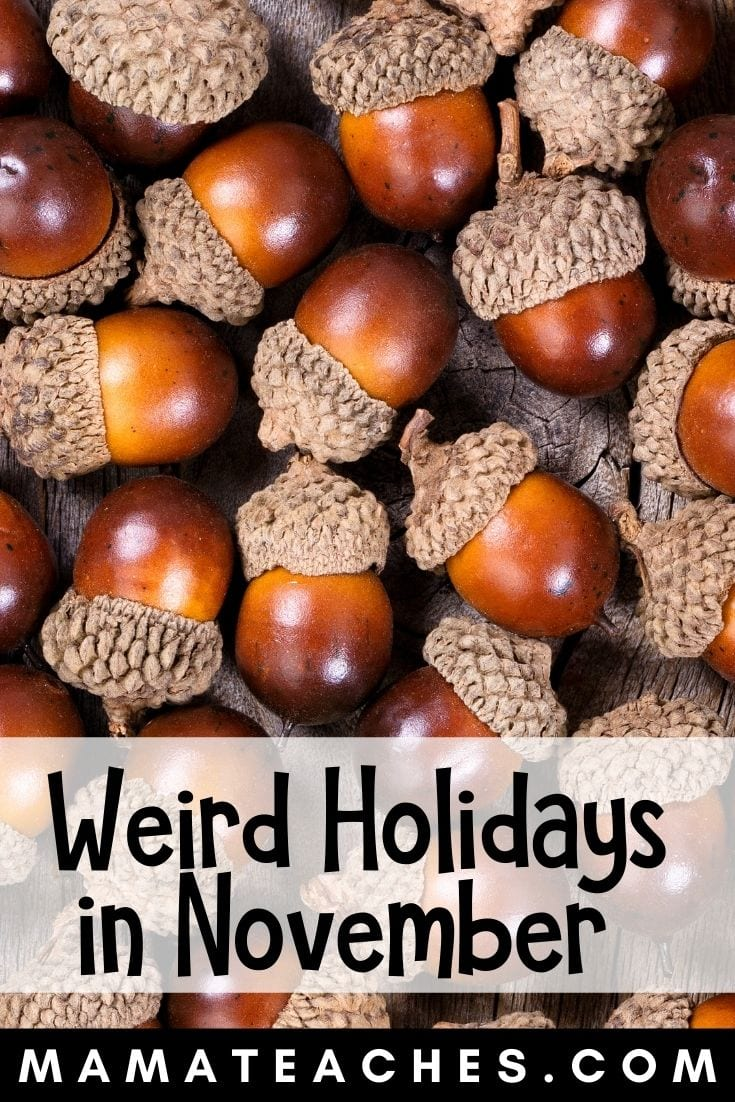 Weird Holidays in November for Kids