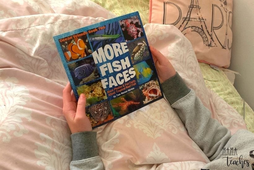 More Fish Faces book by Tam Warner Minton