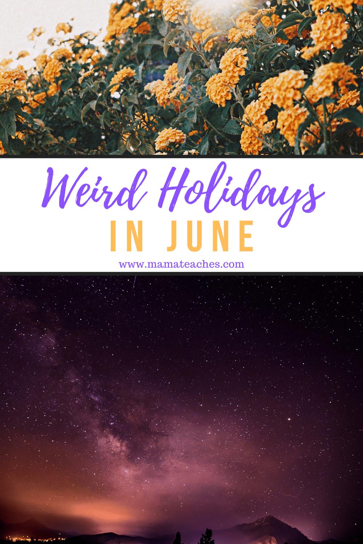 Weird Holidays in June