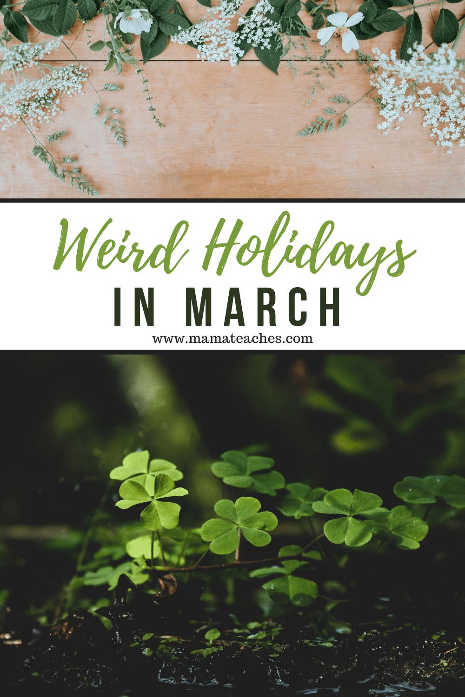 Weird Holidays in March