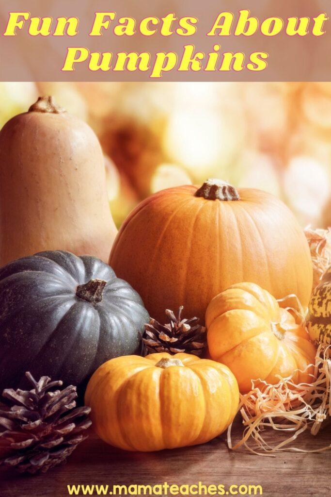 Fun Facts About Pumpkins