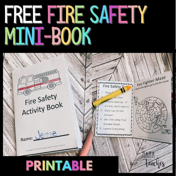 FREE FIRE SAFETY MINI BOOK